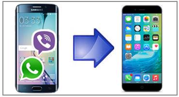 Whatsapp Von Android Auf Iphone Wechseln